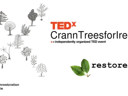 TEDx CrannTreesForIreland